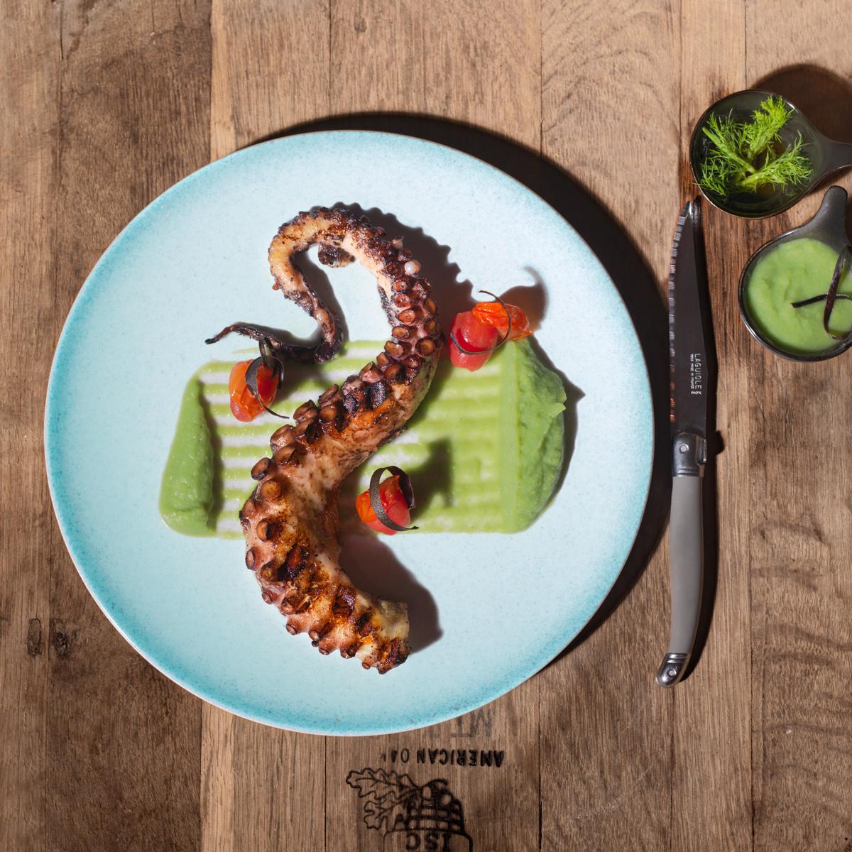 Octopus - Philema, Brussels